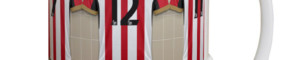 Your name surrounded by your SAFC favourites? Your pets' names? Or, as one or two have chosen, Gary Rowell on all five shirts?