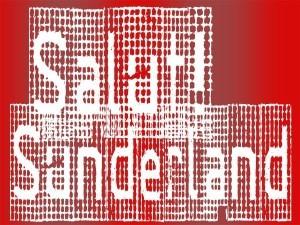 salut sunderland mesh